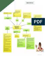 Neurociencia y Aprendizaje-Organizador