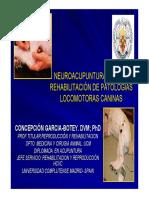 Neuroacupuntura_patologias_caninas.pdf