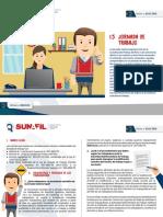 1.5 PF DSJornada de trabajo.pdf