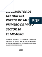 DOCUMENTOS DE GESTION DEL PUESTO DE SALUD  PRIMERO DEMAYO.docx