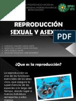 Biología Mecanismos de Reproducción