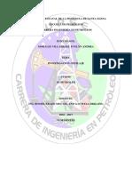 INFORME DE PERFILAJE 2.docx