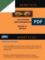 3. Mitosis