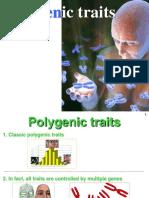 3.Polygenic Traits Ppt