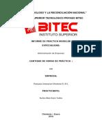 Informe Practica Pre Profesionales 2