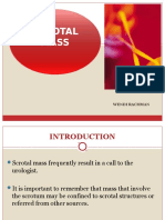 Acute Scrotal Problems REVISI