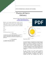 Informe  Huevo.docx