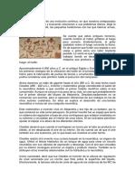 WORD COMPRESORES TORNILLO SERVICIOS.docx