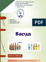 Diseño de Sistema Backus 1