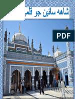 Taj Muhammad Nizamani