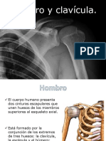 4-hombroclavicula-5.pptx