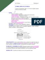 465-2013-08-22-C2 Turbelarios.pdf