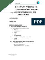 254600064-2-Impact-Amb-Cono-Sur-Juliaca.pdf