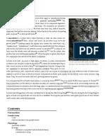 Lichen.pdf