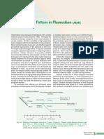 Relapse Pattern in Plasmodium Vivax