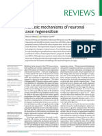 Intrinsic Mechanisms of Neuronal Axon Regeneration