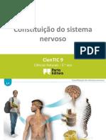 l1 Constituic3a7c3a3o Do Sistema Nervoso