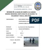 Informe Final-salida a Chilca-Laguna La Milagrosa