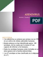 Adenovirus Exposicion