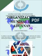 Carlos Luis Michel Fumero - Organización Mundial de Aduanas