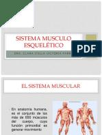 DIAPOSITIVAS TEMA 3.pptx