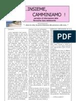 IC N° 2-2008