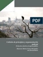 Dialnet-ColisionDePrincipiosYArgumentacionJudicial-6101309.pdf