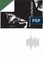 01 Durão, Fabio - O Que é a Crítica Literária (Ch1, 3)