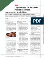 Histologia y Paologia de Los Peces
