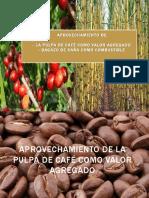 2018 Pulpa de Café y Bagazo de Caña