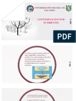 Contaminacion Por Nutrientes en El Agua1-1