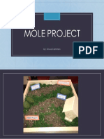 mole project