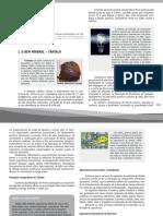 Tantalo.pdf