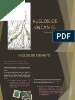 Portafolio - Aves Endemicas
