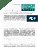 Internet y Las Nuevas Tecnologías de La Información y La Comunicación