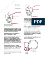 7. HBP DEGR y Prostatitis Final
