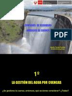 3 Ing. Adolfo Toledo Consejos de Recursos Hídricos de Cuenca