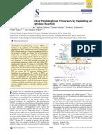 Paper gen PBP4