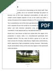 Study of Tea Plantation.docx