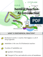 Ch 8 - CHE502 Biological Reaction