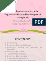 vdocuments.site_desarrollo-embrionario-de-la-deglucion-mando-neurologico.ppt