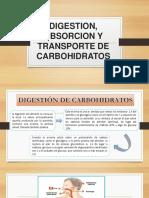Digestion Absorcion y Transporte de Carbohidratos