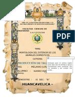 98581927-Partes-Externas-de-Los-ANIMALES.pdf
