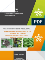 presentacion  Papachina.pptx