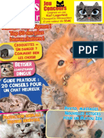 Chats d Amour - Mai 2018