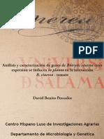 DMG_Benito_Pescador_D_Analisisycaracterizaciondegenes.pdf