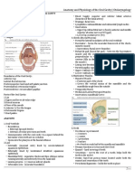 ENT - Anatomy and Physiology of the Oral Cavity