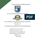 Informe 1 Diseño de Planta
