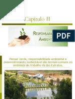 Resumos de Responsabilidade Social e Contabilidade Ambiental