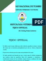 PPT.T-EPITELIAL 02.pdf